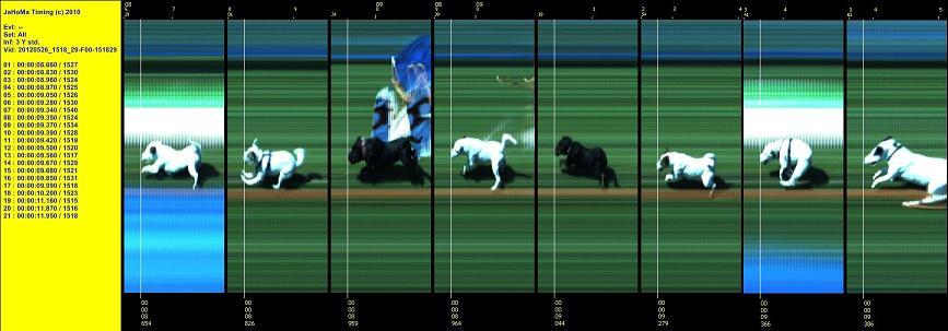 Compilatie van de Terrier races op het Klundert festival (26mei2012).